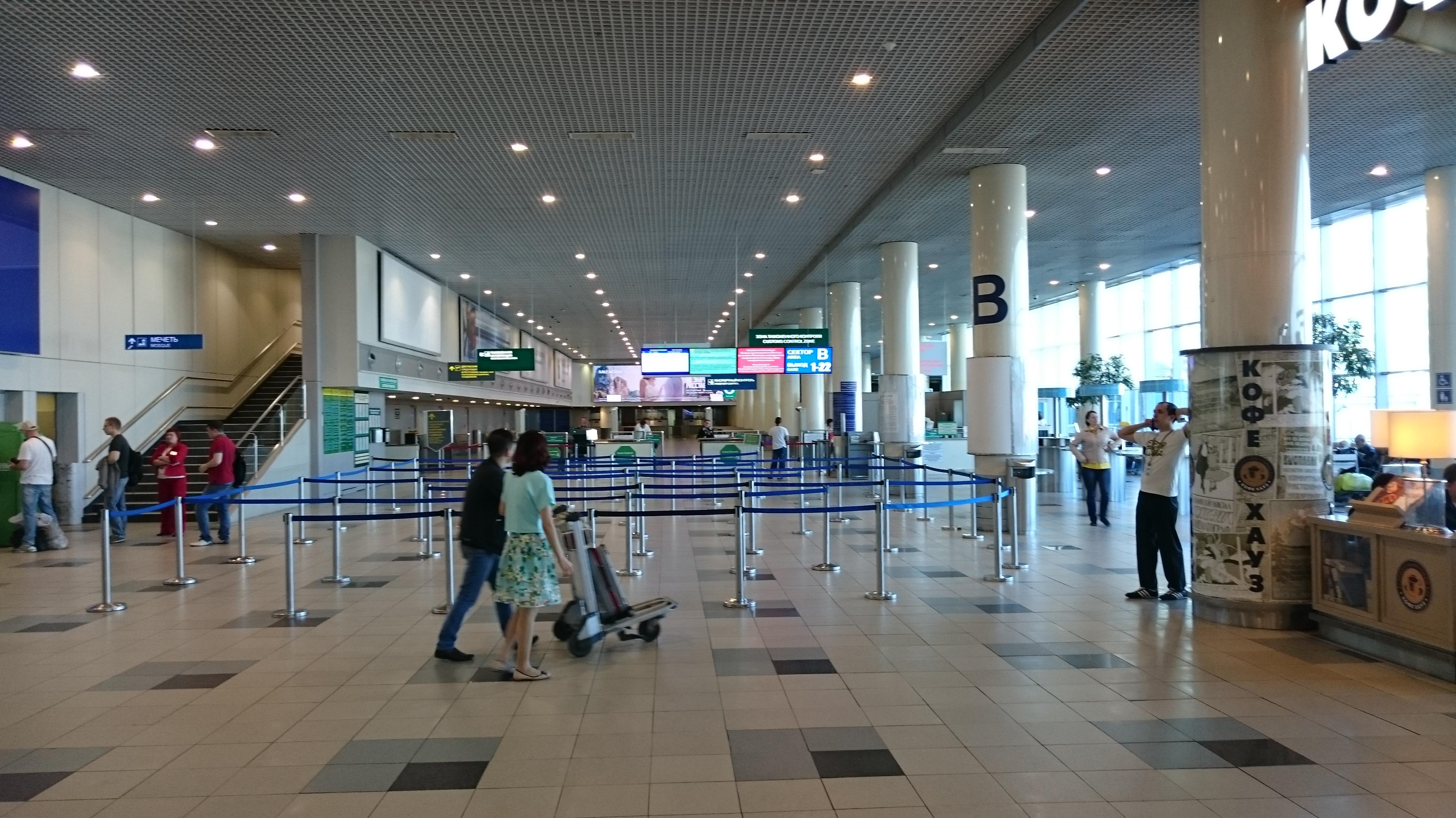 Как устроена кинологическая служба аэропорта 62