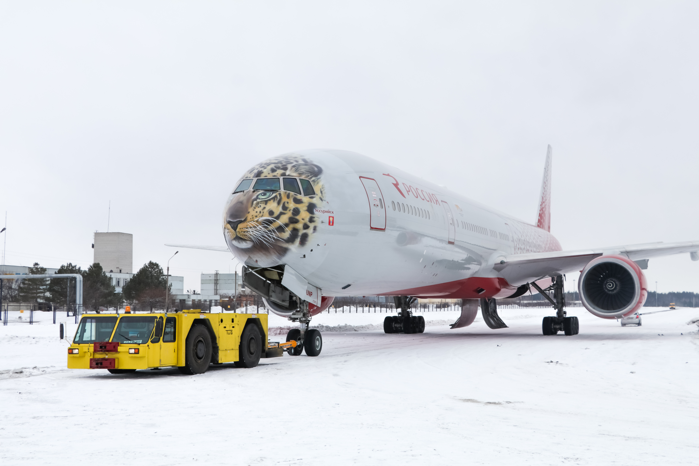 Авиакомпания «Россия» запустила Boeing смордой дальневосточного леопарда